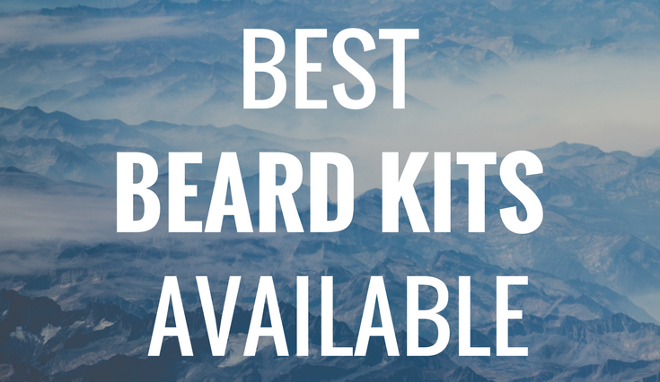 The 5 Best Beard Kits Available Today