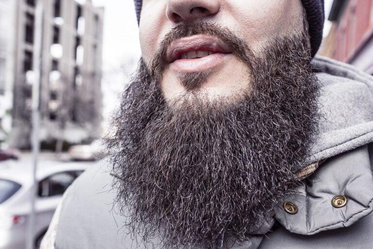 Long Beard Styles for 2020 - Bushy Beard